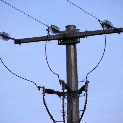 HTA EDF Moyenne Tension